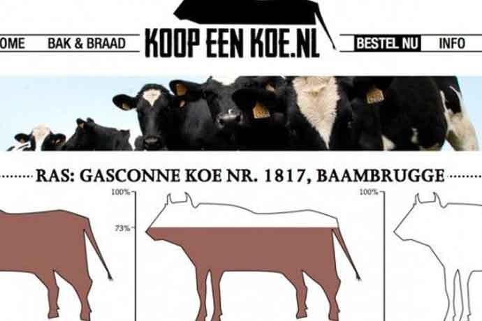 Koop een koe