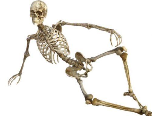 Zware botten, kan dat eigenlijk?