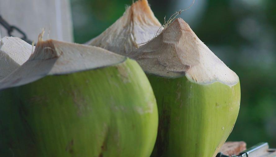 plantaardig zuivel