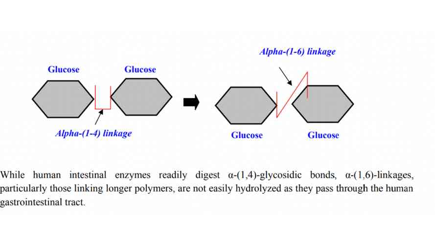 Isomalto-oligosachariden