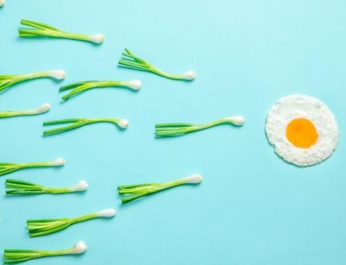 9 tips: Wat kan ik het beste eten als ik snel zwanger wil worden?