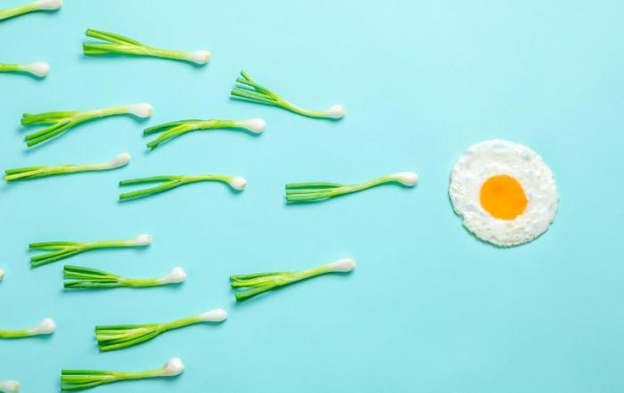 Wat kan ik het beste eten als ik snel zwanger wil worden?